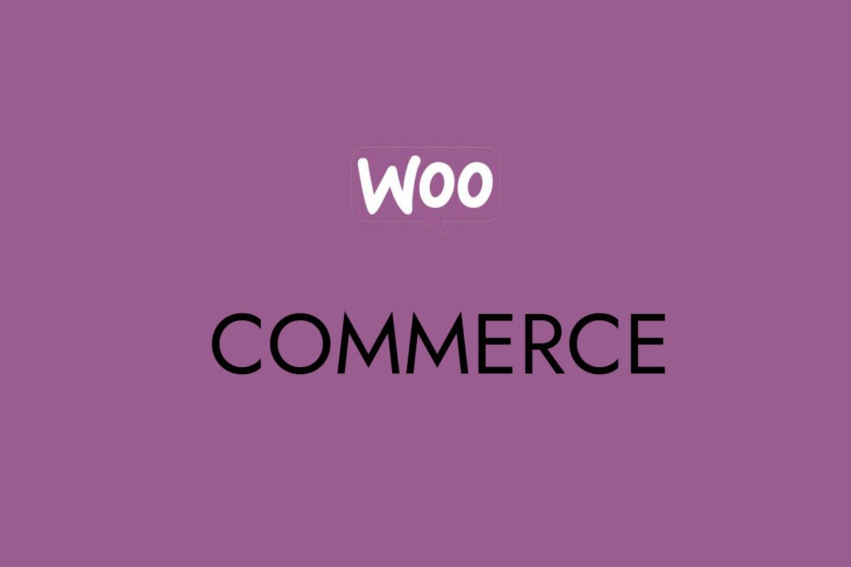 Best WordPress & Woo-commerce Themes